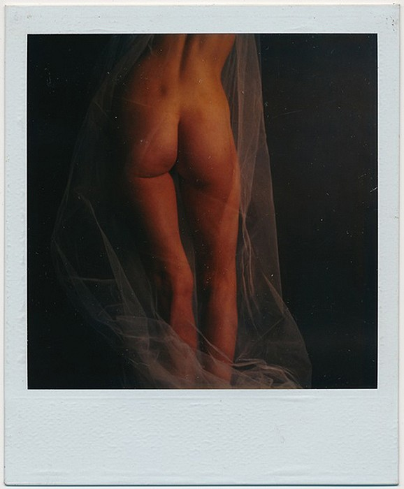 Robert Farber, Nude with Veil, Edition of 9 fine art paper pigment print
