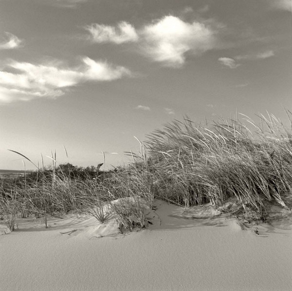 Michael Kahn ,   Summer Breeze, Edition of 50      silver gelatin photograph ,  19 x 19 in. (48.3 x 48.3 cm)     MK140701
