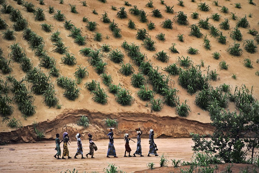 Steve McCurry, Women Walking in a Line, Niamey, Niger 1986, FujiFlex Crystal Archive Print