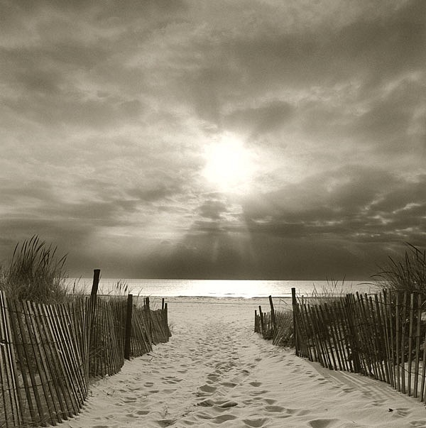 Michael Kahn ,   Island Beach, Edition of 50      silver gelatin photograph ,  14 x 14 in. (35.6 x 35.6 cm)     MK110209