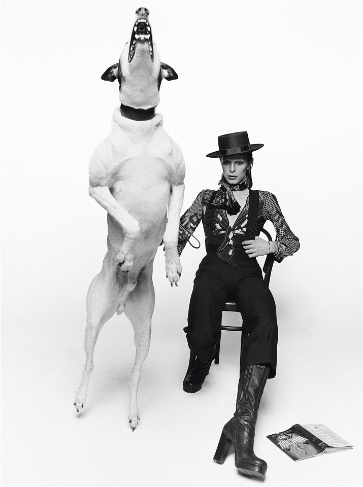 Terry O'Neill ,   David Bowie for Diamond Dogs, London, Ed. 16/50  ,  1974     gelatin silver print ,  48 x 72 in. (121.9 x 182.9 cm)     DB001